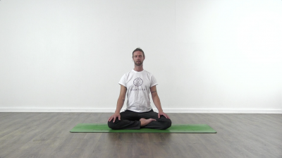 Screenshot from a Online yoga class at Yogateket yoga studio from Uppsala Sweden