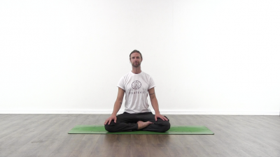 screenshot from online yoga class with yoga teacher at Yogateket yoga studio in Uppsala Sweden